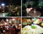 夜桜カフェ開催いたしました